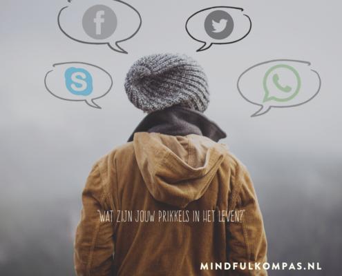 wat zijn jouw prikkels-mindfulkompas